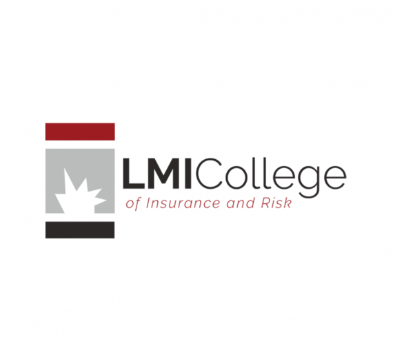 LMI College's New Website