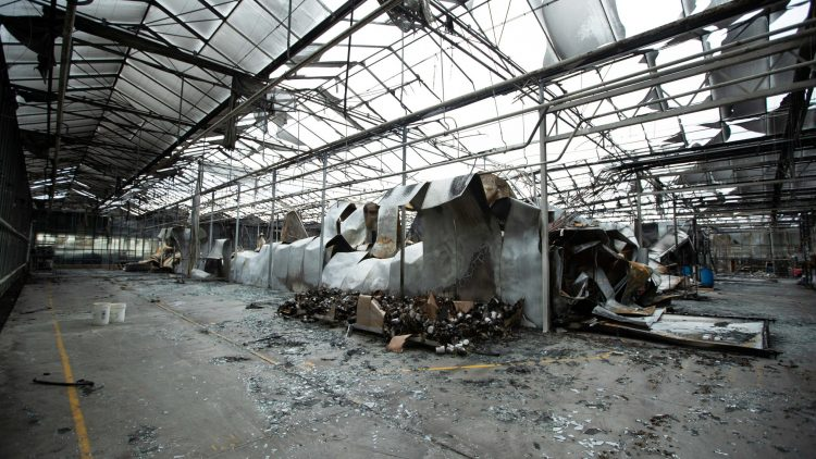 Flower Grower Fire – LMI Appointed