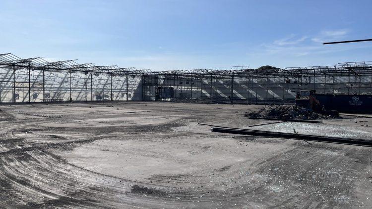 LMI Claims: Flower Grower Update – Demolition